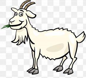 Goat - Fainting Goat Black Bengal Goat Boer Goat Sheep Clip Art PNG