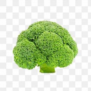 Creative Broccoli - Broccoli Vegetable Cauliflower PNG