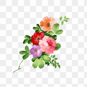 Hand-painted Flowers - Flower Download PNG