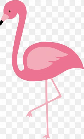 Red Flamingo Vector - Flamingos Bird Euclidean Vector PNG