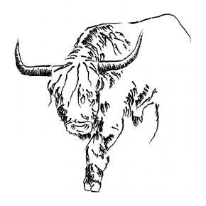 Taurus Cliparts - Cattle Taurus Drawing Bull Clip Art PNG