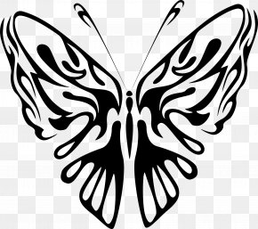 Line Art - Butterfly Drawing Line Art Clip Art PNG