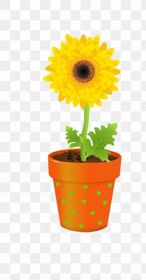Sunflower - Flower Vase Stock Photography Clip Art PNG