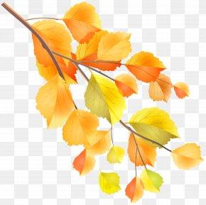Autumn Branch Clip Art Image - Autumn Branch Clip Art PNG