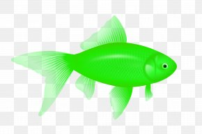 Green Fish Image - Fish Icon Computer File PNG