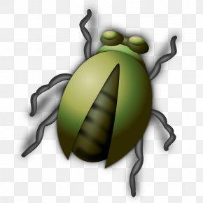 Bug Clip Art - Beetle Free Content Clip Art PNG