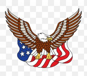 Whitehead And The American Flag - Flag Of The United States Eagle PNG