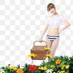 Summer Seaside Material PNG