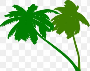 Green Palm Leaves - Arecaceae Tree Clip Art PNG