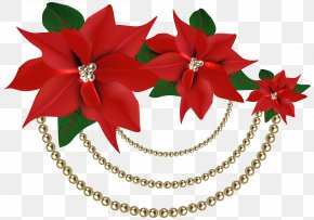 Decorative Christmas Poinsettias With Pearls Clipart Image - Poinsettia Christmas Decoration Clip Art PNG