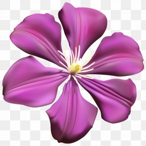 Purple Flower Transparent Clip Art Image - Purple Flower PNG
