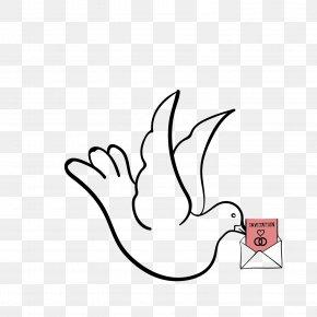Vector Pattern Flying Pigeon Pigeon - Homing Pigeon Columbidae Clip Art PNG