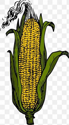 Corn - Candy Corn Corn On The Cob Vector Graphics Clip Art PNG