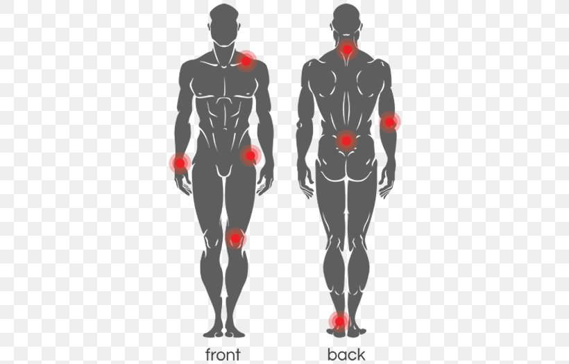 human body human anatomy vector graphics clip art image png 525x525px watercolor cartoon flower frame heart human body human anatomy vector