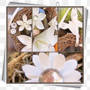 Design - Floral Design Picture Frames Flowering Plant PNG