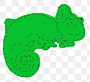 Chameleon - Reptile Chameleons Lizard Crocodile PNG