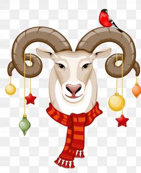 Goat - Goat Sheep Horn PNG