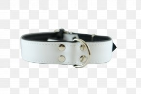 White Collar - Dog Collar Belt Buckles PNG