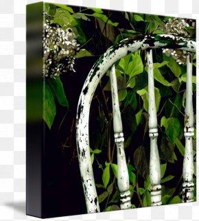 Tree - Gallery Wrap Canvas Tree Art Flowerpot PNG