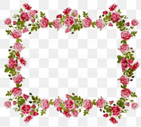 Floral Design Flower Borders Clip Art Rose PNG