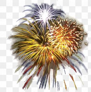 Fl Cliparts - Fourth Of July Celebration Fireworks Clip Art PNG