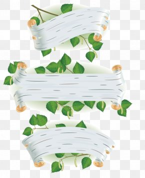 Green Leaves Billboard - Paper Birch Silver Birch Euclidean Vector Leaf Bark PNG