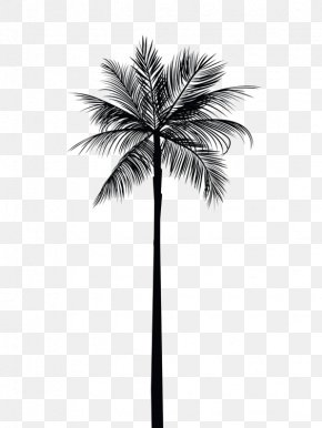 Black Coconut Tree - Arecaceae Tree Gold Palm Branch Wall Decal PNG