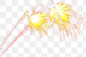 Fireworks Effect - Fireworks PNG