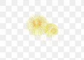Fireworks Fireworks - Adobe Fireworks PNG