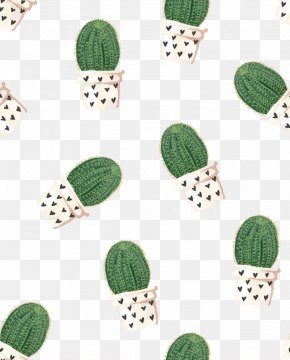 Cactus - 2018 Planner Weekly Monthly Cactus: Organizer Journal With To Do Lists And Inspirational Quotes Cactaceae Notebook Diary Personal Organizer PNG