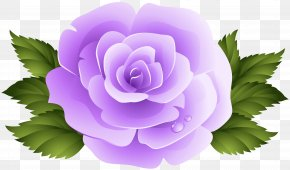 Purple Rose Clip Art Image - Image File Formats Lossless Compression PNG