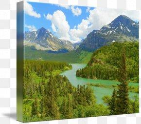National Park - Nature Reserve Wilderness Crater Lake National Park Vegetation PNG
