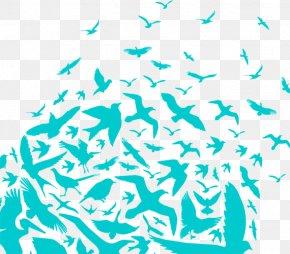 Bird - Bird Heart Blue Clip Art PNG