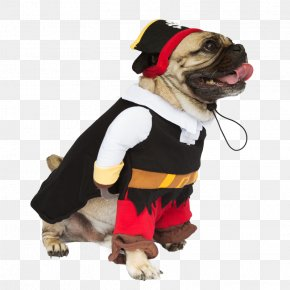 A Dog With A Hat - Dog Breed Costume Pug Pet Clothing PNG
