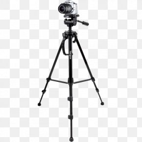 Video Camera Tripod Photos - Tripod Head Camcorder Camera Targus PNG