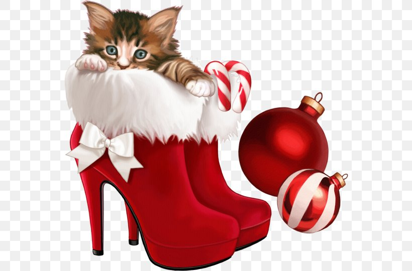 Kitten The Christmas Shoes Christmas Card Clip Art, PNG