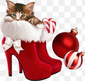Red Shoes - Kitten The Christmas Shoes Christmas Card Clip Art PNG