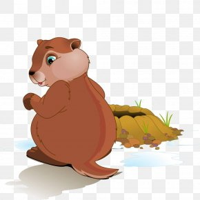 Cartoon Bear Material - Groundhog Day Stock Photography Clip Art PNG