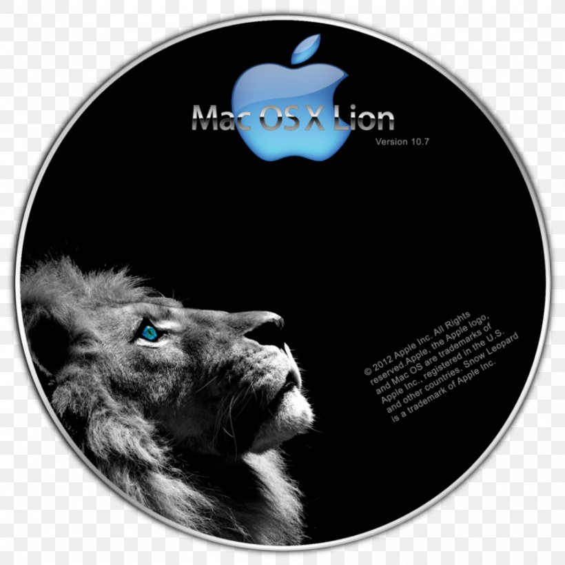 Lion Desktop Wallpaper Facebook Png 894x894px Lion Animal Black And White Cat Like Mammal Computer Download