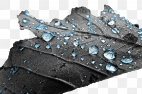Leaves On The Blue Water Droplets - Water Photography Drop Illustration PNG