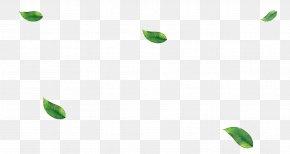 Green Leaves - Leaf Plant Stem Desktop Wallpaper PNG