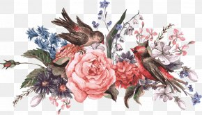 Vector Flower - Bird Flower Stock Photography Illustration PNG