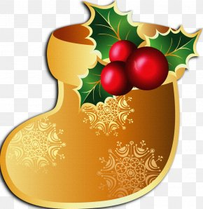 Decorations - Christmas Sticker Common Holly Clip Art PNG