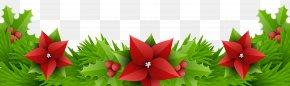 Christmas Border Decoration Transparent Clip Art Image - Floral Design Amaryllis Belladonna Cut Flowers PNG