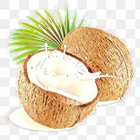 Food Coconut Water - Coconut PNG