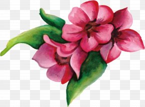 Pink Flowers - Flower Pink PNG