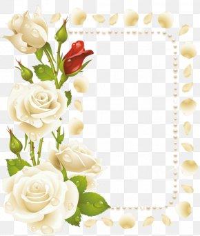بارك الله - Borders And Frames Rose Flower Clip Art PNG