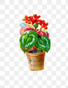 Free Flower Graphics - Flowerpot Houseplant Clip Art PNG