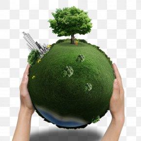 Green Earth Greening Environment - Earth Greening Vegetation Natural Environment PNG