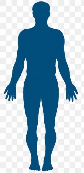 Cama De Corpo - Vector Graphics Clip Art Silhouette Human Body Stock Photography PNG